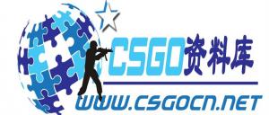 CSGO资料库